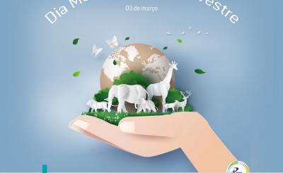 Dia Mundial da Vida Silvestre